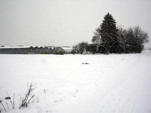 Gaertnerei_im_Winter